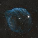 Dolphin  Nebula Sh2-308,                                vijay ladwa