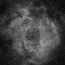 Nebulosa Rosetta,                                Franco Silvestrini