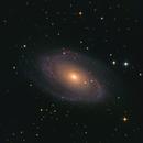 M81 and M82,                                Michael Kutschera