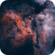 Carina Nebula (Part Of),                                David