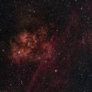 Sh2-115 - Cygnus Emission Nebula,                    Gary Imm