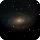 M81,                                Stewart