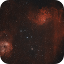 Flaming Star and Tadpole,                                georgian82