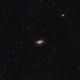 Sunflower Galaxy,                                Bradley Hargrave
