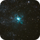 Tarantula Nebula,                                Matt Thompson