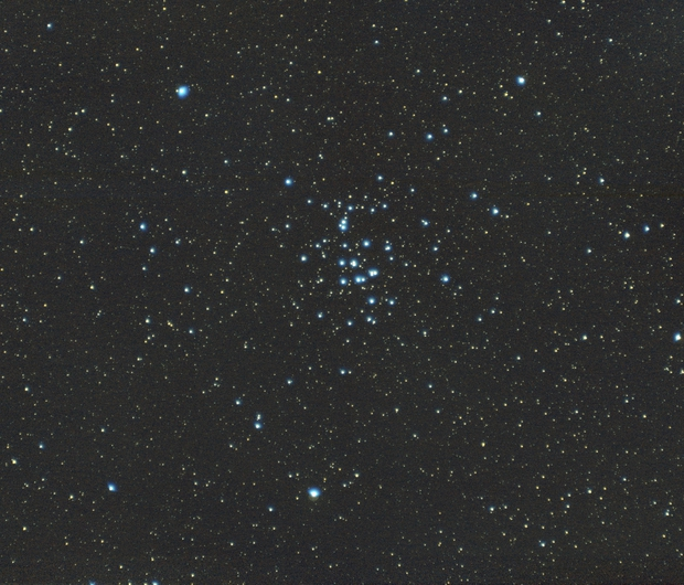 Praesepe M44,                                  Bernhard
