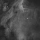 IC 5070 - Pelican nebula (Ha),                                  Falk Schiel