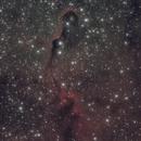 IC1396 The Elephant Trunk Nebula,                                Steve Siedentop