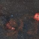 Widefield Rosetta and Cone,                                Davide De Col