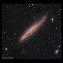 NGC4945,                                Göran Nilsson