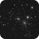 Coma Cluster,                                Andreas Zirke