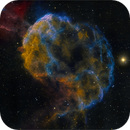 The Jellyfish Nebula (IC 443),                                Randal Healey