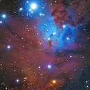 NGC2264 (Fox Fur Nebula & Cone Nebula),                                Yokoyama kasuak