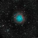 Abell 31 (SH2-290) Planetary Nebula,                                Richard Bratt
