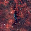 NGC 6914 VdB 131/132 nel Cigno,                                Elio - fotodistel...