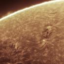 Sunspot AR2835, 2021-06-26,                                Loran Hughes