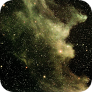 IC 2118,                                David Holko