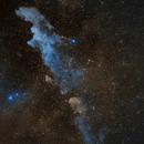 IC 2118 - Witch Head Nebula,                                Michel Makhlouta