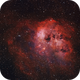 IC 410  & the Tadpoles,                                Peter Myers