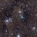 Shark Nebula - LDN 1235,                                NewfieStargazer
