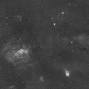 Wide Field around NGC 7635, Bubble Nebula,                                S. DAVID