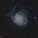 M101 - ES ED152CF,                                Mike Wiles