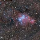 NGC 2264 and Cone Nebula,                                peterfritzenwallner