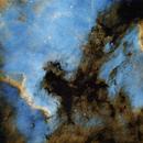 North Amerca and Pelican Nebulae  SHO,                                  Hans H.