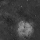 IC1396 & SH2-129,                                  Marcus Wögerer