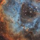 Dust clouds in Rosette Nebula,                                Piet Vanneste