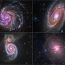 Galaxy Quartet (Multiwavelength composite images),                                DetlefHartmann
