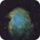 Monkey Head Nebula,                                Nikita P
