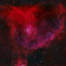 Heart Nebula,                                Staridolski