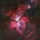 The Great Carina Nebula,                                  Wei-Hao Wang