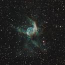 NGC 2359,                                lucionegrini