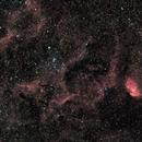 Tulip nebula and surroundings,                    pterodattilo