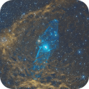 Sh2-129  HOO Giant Squid and Flying Bat Nebula (First Attempt and Noisier than my 3 Kids)  RASA8,                                Brandon Tackett