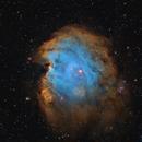 Monkey Head Nebula,                                Jacek Bobowik