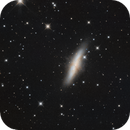 M 82 Cigar Galaxy,                                  Michael Timm
