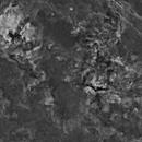 12 Panel Cygnus Mosaic,                                Hytham