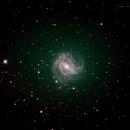 M83 - Southern Pinwheel Galaxy,                                Wayne Stronach