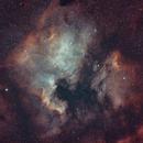 North America and Pelican Nebulae,                                jimww