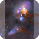 Rho Ophiuchi and Blue Horsehead in Bortle 2,                                Todd