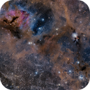 IC348 and the Surrounding Clouds,                                Lancelot365