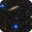 NGC 4945 The Tweezers Galaxy and Bright Blue Stellar Companions,                                Ian Parr
