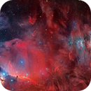 Two panels deep field mosaic from Horsehead to M42 - LRGBHa composition,                                David Lindemann