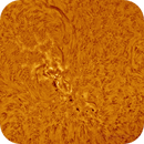 2013-05-01 @ 12-43-40gmt: The Sun in Ha -> AR11731 and 11728 in Close-up,                                Fernando