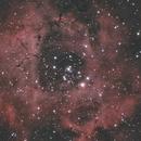Rosette Nebula re process,                                Alan Hancox