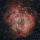 Rosette Nebula,                                frowertr