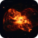 NGC 2440,                                Steven Marx